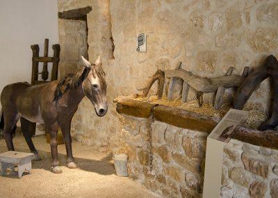 burro-establo-museo-bustos