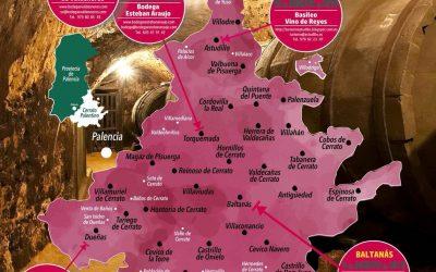 Descubre las Bodegas del Cerrato Palentino